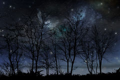 Night stars sky. A night stars sky image Stock Images