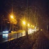 Night Street Next To Pedestrian Pathway  Royalty Free Stock Photos
