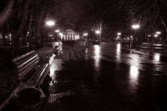 Night street in the rain Stock Images
