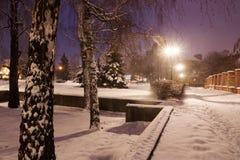 Night street with snow Stock Image