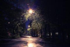 Night summer park alley Stock Photos
