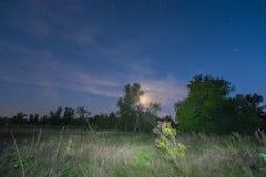 Night summer prairie scene Stock Photo