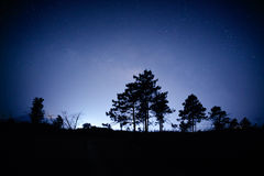 Night sunrise landscape with milky way, trees silhouette Stock Images