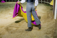 Night tentadero training Royalty Free Stock Images