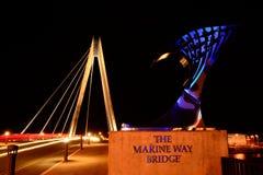 Night time bridge. Royalty Free Stock Images