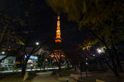 Night time view of Tokyo Tower Royalty Free Stock Photo