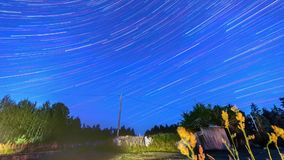 Night timelapse footage of star trails in space. Amazing night timelapse footage of star trails in space. Pine forest. Nature landscape stock video