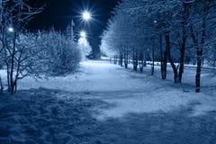 Night town stock image