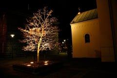 Night town scape. Illuminated tree near the church at night Stock Image