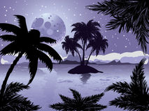 Night tropic island Royalty Free Stock Image