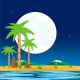 Night in tropic Royalty Free Stock Photo