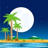 Night in tropic Royalty Free Stock Photo