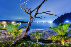 Night on the tropical beach. Thailand Stock Photo