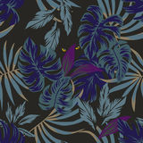 Night tropical leaves pattern with eyes in the middle Stock Photography