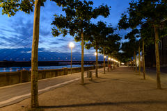 Night view at the alley of plane-trees in the Dusseldorf Royalty Free Stock Images