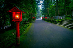 The night view of the approach to the Hakone shrine in a cedar forest. With many red lantern lighted up.  stock photos