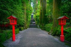 The night view of the approach to the Hakone shrine in a cedar forest. With many red lantern lighted up Royalty Free Stock Images
