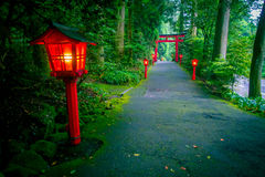 The night view of the approach to the Hakone shrine in a cedar forest. With many red lantern lighted up and a great red. Torii gate royalty free stock image