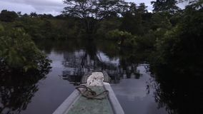 Night view from boat at river. Beautiful landscape in Latin America stock video footage