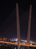 Night view of the bridge in the Russian Vladivostok Royalty Free Stock Photos