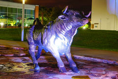 Night view of bull statue Royalty Free Stock Images