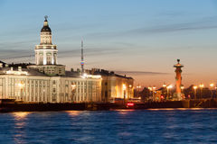 Night view of cabinet of curiosities in St. Petersburg Royalty Free Stock Photo
