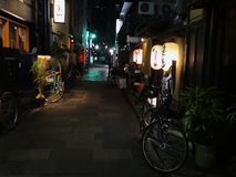 Night view of the charming Pontocho area located in Kyoto, Japan royalty free stock photography