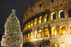 Rome colosseum during Christmas. The night view during christmas eve at Rome Colosseum royalty free stock photography