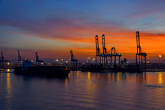 Night view of container terminal Stock Photography