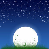 Night view of full moon. Night view of huge full moon and grass meadow royalty free illustration