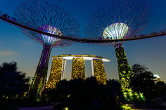 Night view of the garden singapore Royalty Free Stock Photo