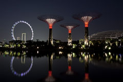 Night view of Gardens by the bay Royalty Free Stock Photo
