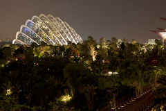 Night view of Gardens by the Bay Royalty Free Stock Images
