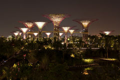 Night view of Gardens by the Bay Royalty Free Stock Photos