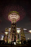 Night view of Gardens by the Bay Stock Image