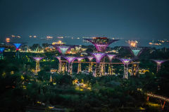 Night view of Gardens by the Bay from Marina Bay Sands SkyPark Stock Images