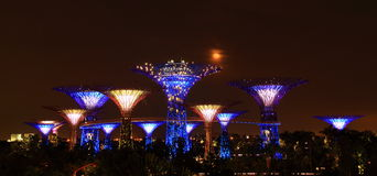 Night scene of gardens by the bay in singapore. Super iron trees in garden by the bay in singapore at night with moonlight Stock Image