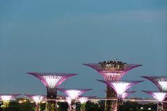 Night view of gardens by the bay slow shutter blur Stock Image