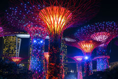 Night view of illuminated Supertree Grove at Gardens by the Bay in Singapore Stock Photo
