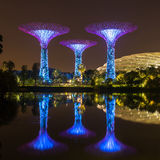 Night view of illuminated Supertree Grove at Gardens by the Bay Stock Image