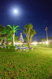 Night view of lawn with green grass Royalty Free Stock Photos