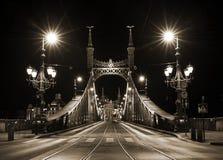 Night view of Liberty Bridge in Budapest, Hungary Royalty Free Stock Photos