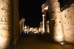 Luxor Temple - Egypt. Night view of Luxor Temple Luxor, Egypt stock image