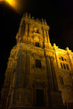 The night view of Malaga Cathedral Stock Images