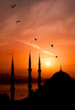 Night view of mosque, Istanbul Royalty Free Stock Image