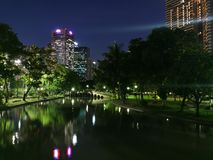 Night view in the park. Stock Image