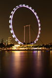 Night scene of singapore flyer. Night view of the highest flyer in the world singapore Stock Image