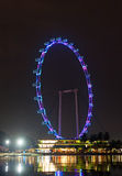 Night view of Singapore Flyer Stock Photos