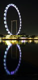 Night scene of singapore flyer. Singapore flyer in the night, lights on, so beautiful Stock Photography