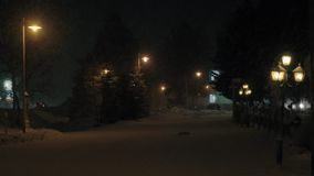 Night view of snowy avenue with fir trees and lanterns. Cinemagraph - Winter night scene of deserted avenue with fir trees and snow falling in the light of stock footage